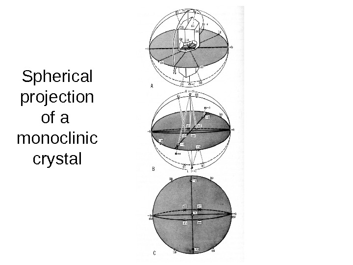 Spherical projection of a  monoclinic crystal