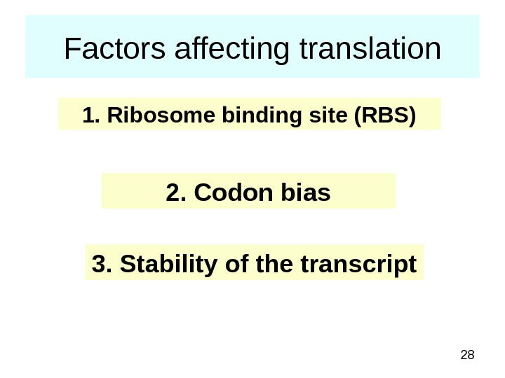 28 Factors affecting translation 1. Ribosome binding site (RBS) 2. Codon bias 3. Stability of the