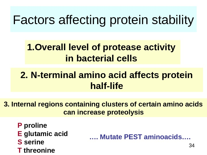 34 Factors affecting protein stability 1. Overall level of protease activity in bacterial cells 2. N-terminal