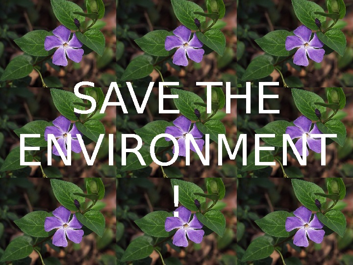 SAVE THE ENVIRONMENT !