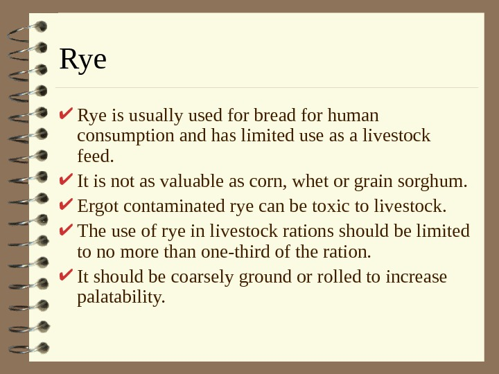 Rye is usually used for bread for human consumption and has limited use as