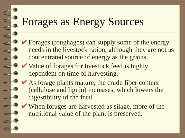 Forages as Energy Sources Forages (roughages) can supply some of the energy needs in