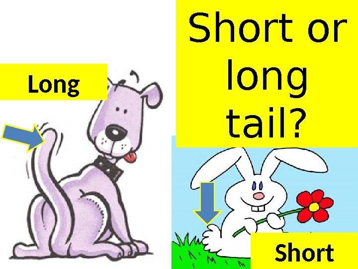 Short or long tail? Short. Long