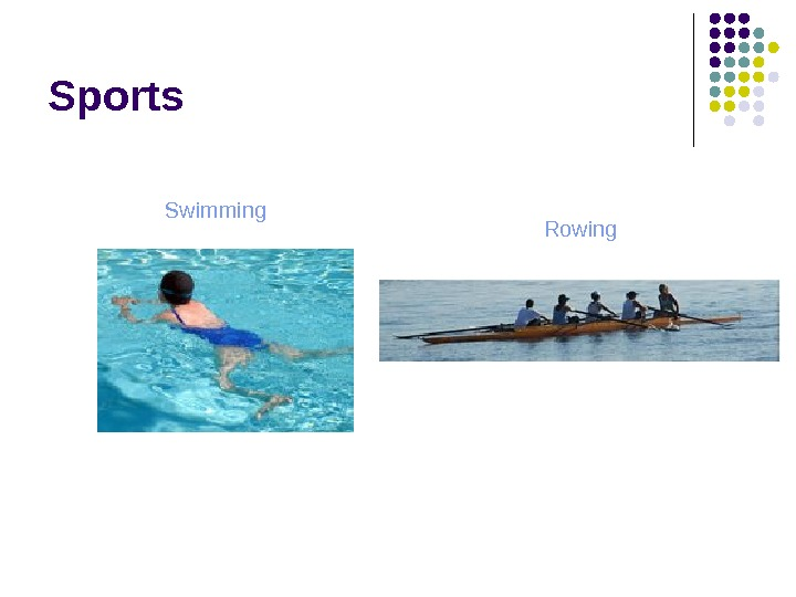 Sports Swimming Rowing