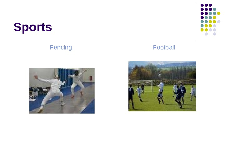 Sports Fencing Football