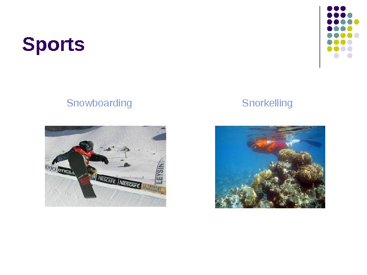 Sports Snowboarding Snorkelling