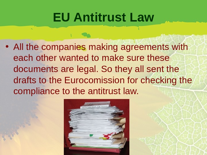 EU Antitrust Law • All the companies making agreements with each other wanted to make sure