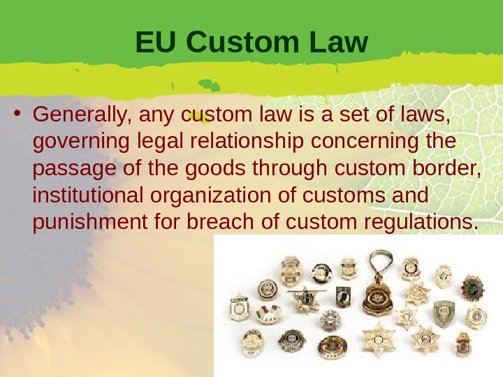 EU Custom Law • Generally, any custom law is a set of laws,  governing legal