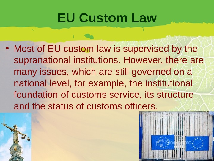 EU Custom Law • Most of EU custom law is supervised by the supranational institutions. However,