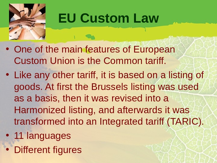EU Custom Law • One of the main features of European Custom Union is the Common