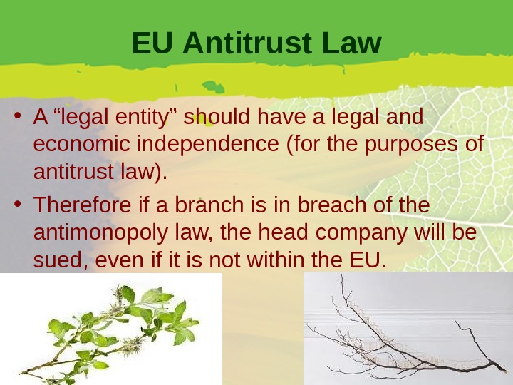 "EU Antitrust Law • A ""legal entity"" should have a legal and economic independence (for the"
