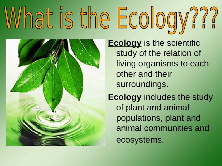 Ecology  is the scientific study of the relation of living organisms to each