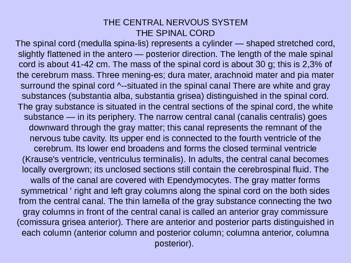 THE CENTRAL NERVOUS SYSTEM THE SPINAL CORD The spinal cord (medulla spina-lis) represents a cylinder —