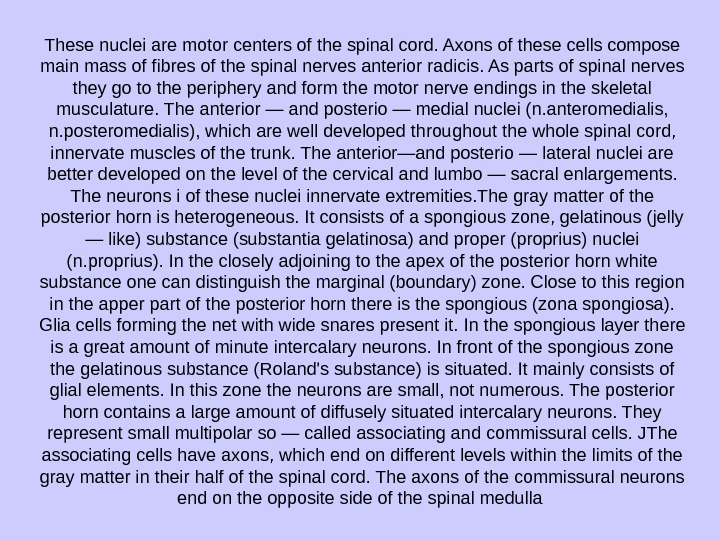 These nuclei are motor centers of the spinal cord. Axons of these cells compose main mass