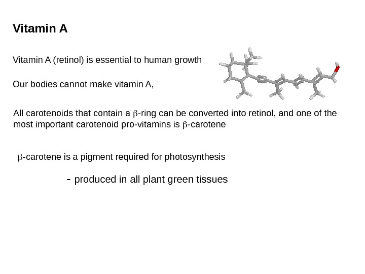 Vitamin A (retinol) is essential to human growth Our bodies cannot make vitamin A,
