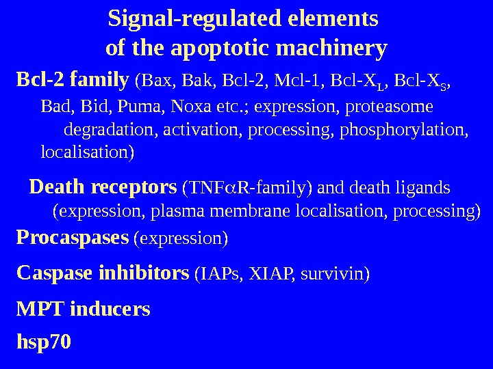 Signal-regulated elements of the apoptotic machinery Bcl-2 family (Bax, Bak, Bcl-2, Mcl-1, Bcl-X L