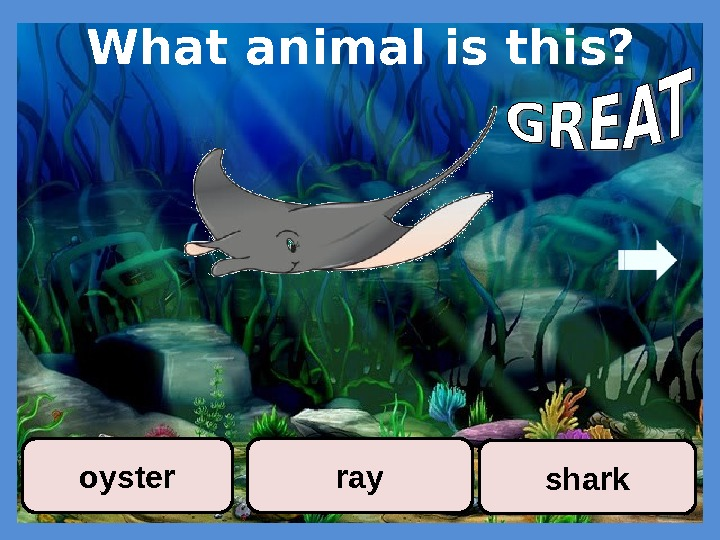 What animal is this? sharkrayoyster