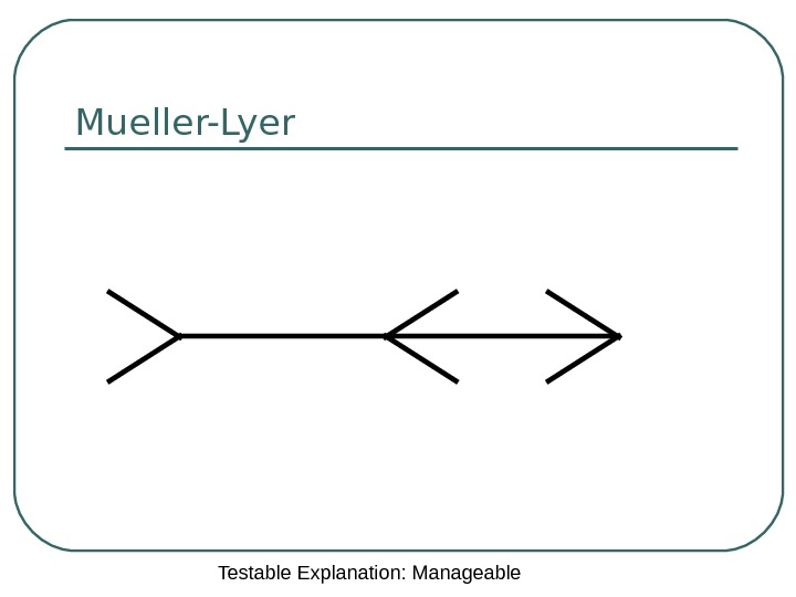 Mueller-Lyer Testable Explanation: Manageable