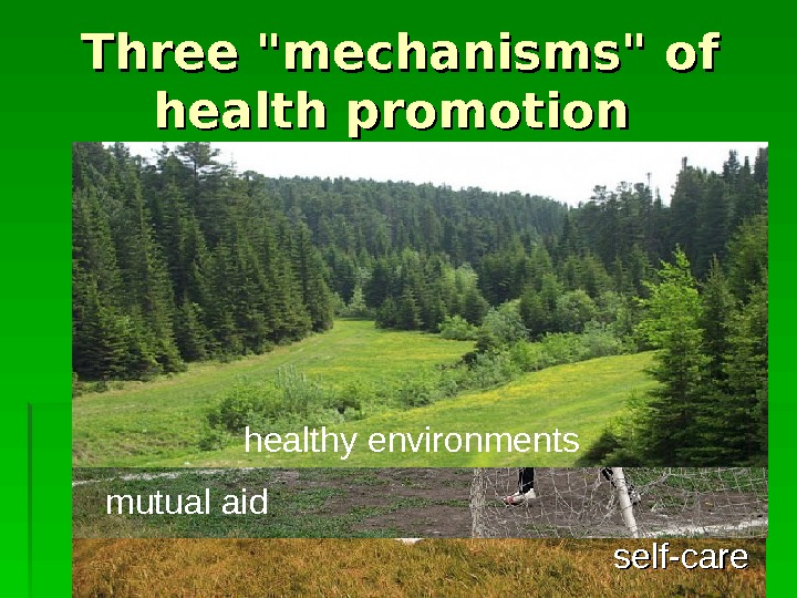 Three mechanisms of health promotion self-care  mutual aid healthy environments