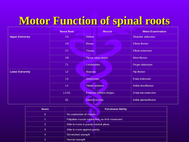 Nerve Root Muscle Motor Examination Upper Extremity C 5 Deltoid Shoulder abduction C 6 Biceps