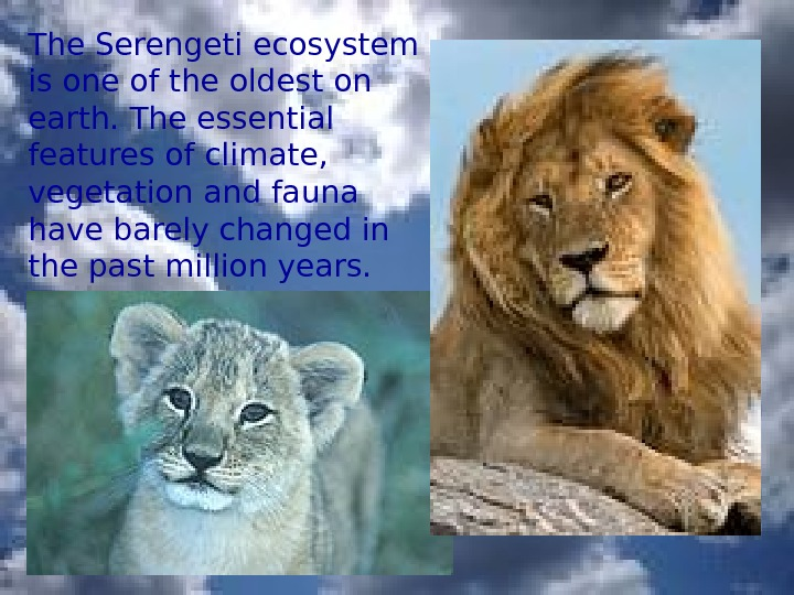 The Serengeti ecosystem is one of the oldest on earth. The essential features of climate,
