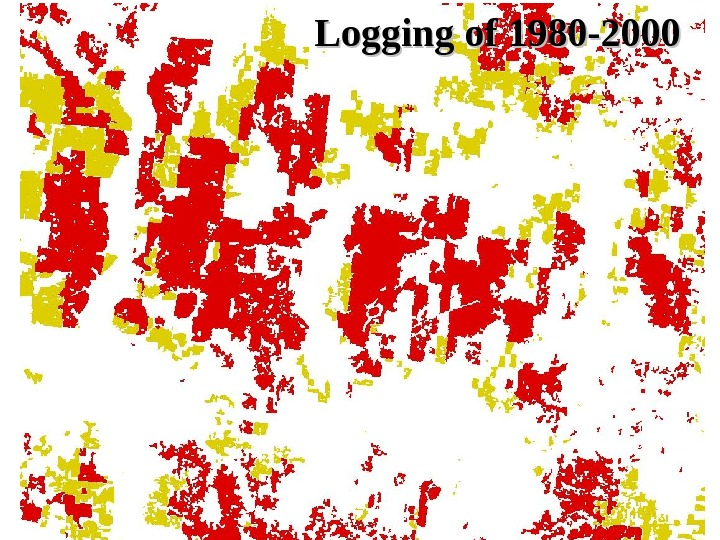 Logging of 1980 -2000