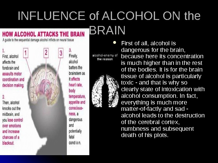 INFLUENCE of ALCOHOL ON the BRAIN  First of all, alcohol is dangerous for the
