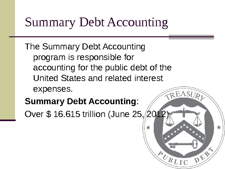 Summary Debt Accounting The Summary Debt Accounting program is responsible for accounting for the