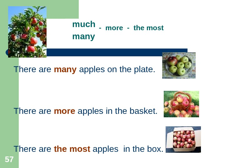 57 much  - more - the most many  There are many apples on the