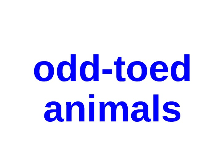 odd-toed  animals