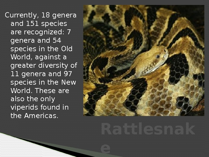 Currently, 18 genera and 151 species are recognized: 7 genera and 54 species in the Old