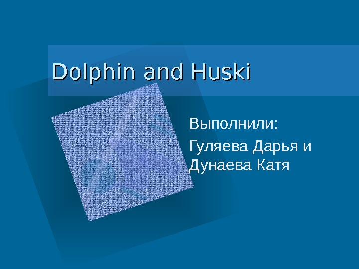 Dolphin and Huski Выполнили:  Гуляева Дарья и Дунаева Катя