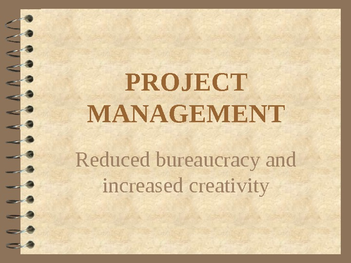 PROJECT MANAGEMENT Reduced bureaucracy and increased creativity