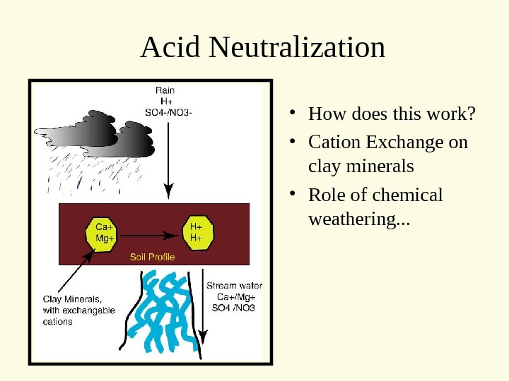 Acid Neutralization • How does this work?  • Cation Exchange on clay minerals • Role