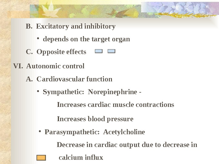 B.  Excitatory and inhibitory • depends on the target organ   C.