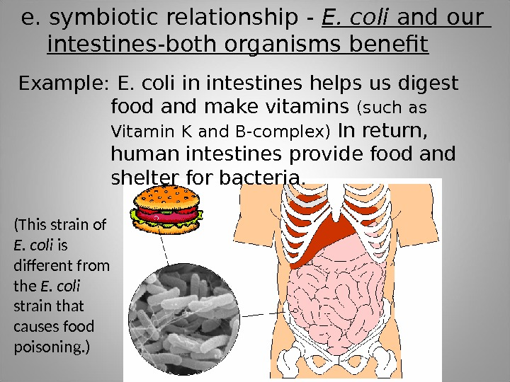 e. symbiotic relationship - E. coli and our  intestines-both organisms benefit Example: E. coli