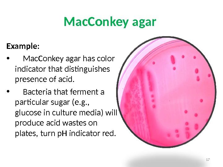 Mac. Conkey agar Example: •  Mac. Conkey agar has color indicator that distinguishes presence of