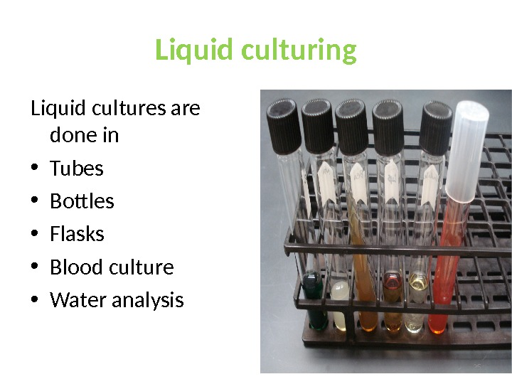 Liquid culturing Liquid cultures are done in • Tubes • Bottles • Flasks • Blood culture