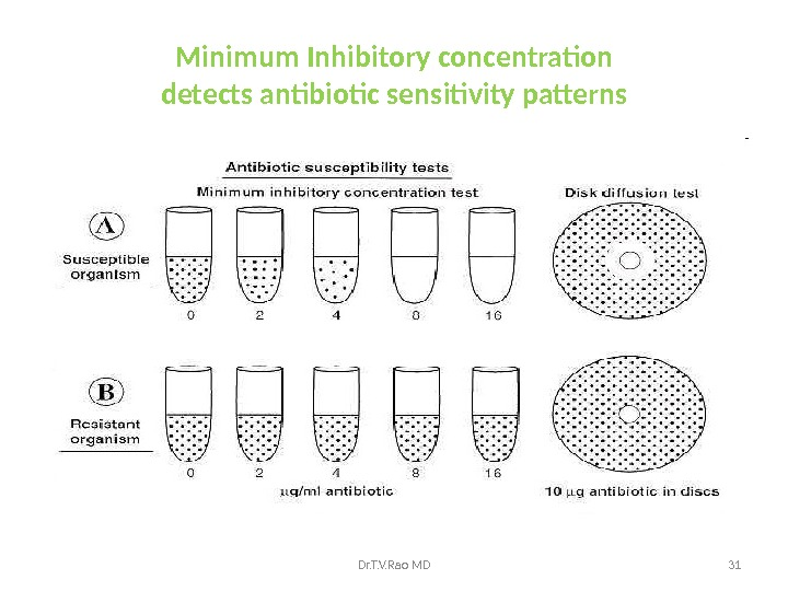 Minimum Inhibitory concentration detects antibiotic sensitivity patterns Dr. T. V. Rao MD 31