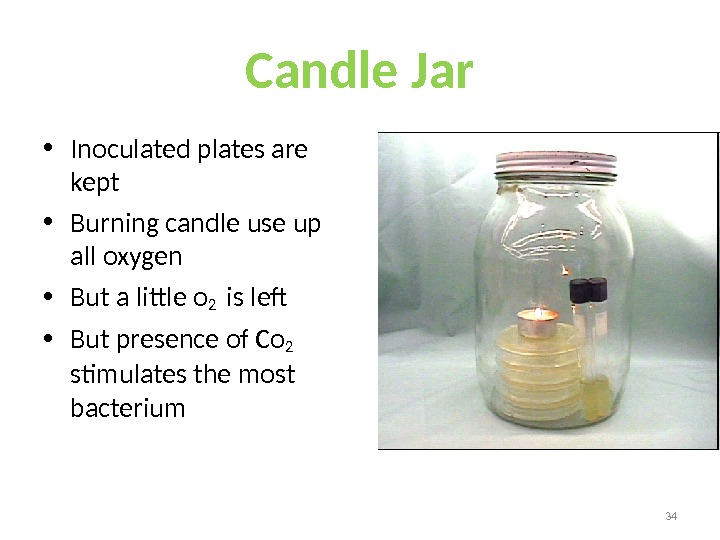 Candle Jar • Inoculated plates are kept • Burning candle use up all oxygen • But
