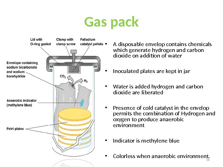 Gas pack • A disposable envelop contains chemicals which generate hydrogen and carbon dioxide on addition