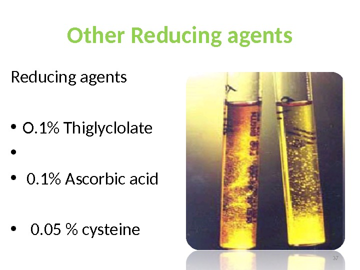 Other Reducing agents • O. 1 Thiglyclolate • •  0. 1 Ascorbic acid • 0.