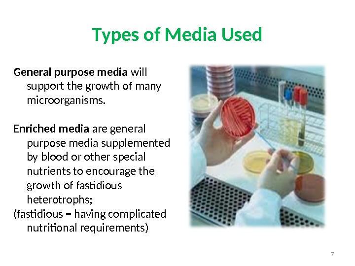 General purpose media will support the growth of many microorganisms. Enriched media are general purpose media