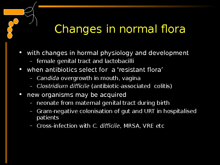 Changes in normal flora  • with changes in hormal physiology and development – female