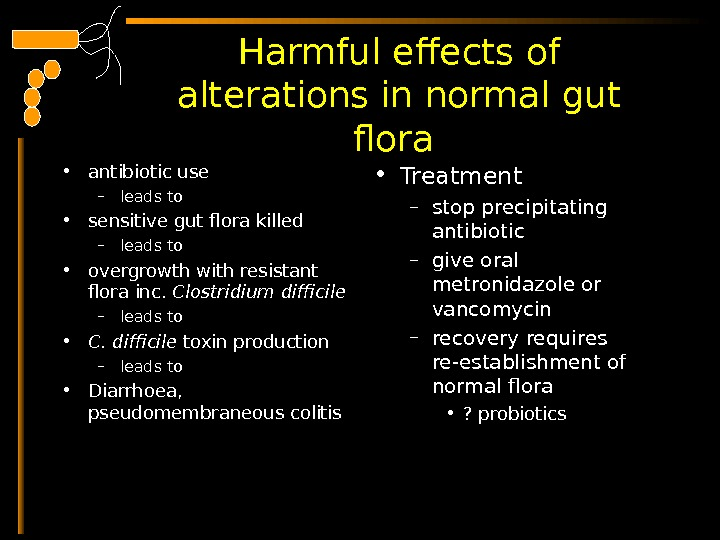 Harmful effects of alterations in normal gut flora  • antibiotic use – leads to