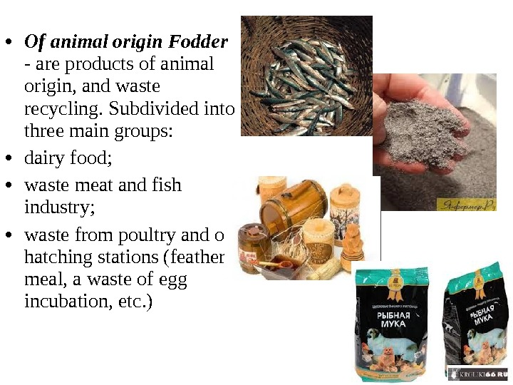 • Of animal origin Fodder - are products of animal origin, and waste recycling. Subdivided