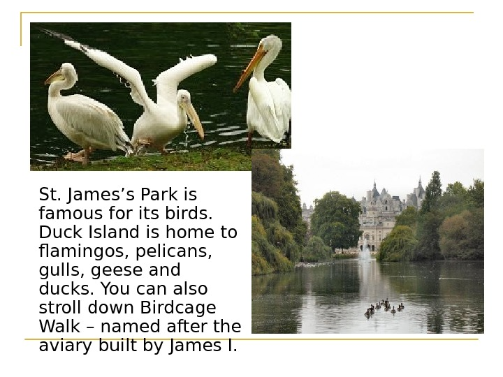 St. James's Park is famous for its birds.  Duck Island is home to
