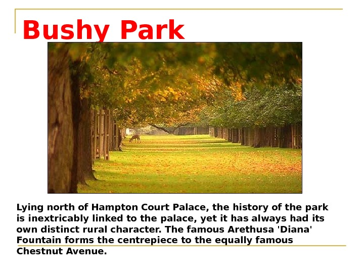 Bushy Park Lying north of Hampton Court Palace, the history of the park is