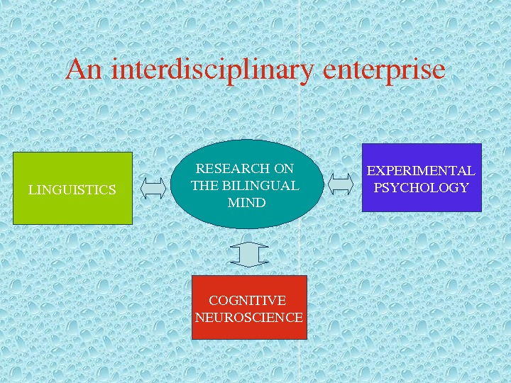 Aninterdisciplinaryenterprise RESEARCHON THEBILINGUAL MINDLINGUISTICS EXPERIMENTAL PSYCHOLOGY COGNITIVE NEUROSCIENCE