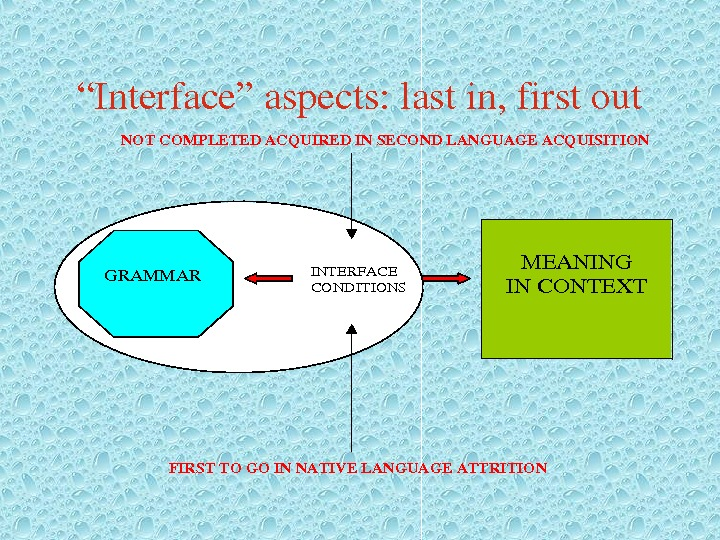 """ Interface""aspects: lastin, firstout. NOTCOMPLETEDACQUIREDINSECONDLANGUAGEACQUISITION INTERFACE CONDITIONS FIRSTTOGOINNATIVELANGUAGEATTRITION MEANING INCONTEXT GRAMMAR"